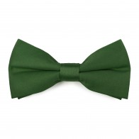 Piquant Green Bow Tie #AB-BB1009/26