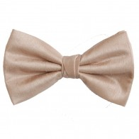 Champagne Shantung Wedding Bow Tie #BB1866/5
