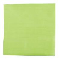 Lime Satin Pocket Square #TPH1887/5 #LAST STOCK