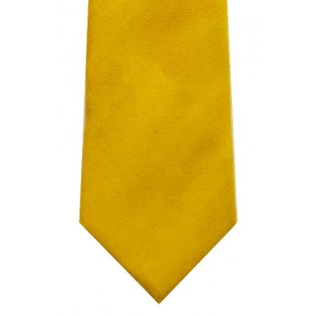 Gold Suede Effect Tie #T1869/10